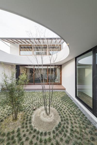 中庭 (鶴舞の家)