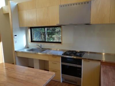 緑の中の家~自然の中で子供が伸び伸び育つ家~ (キッチン)
