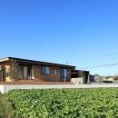 清武町の家~素材感を愉しむ家~の写真 南東側外観