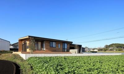 清武町の家~素材感を愉しむ家~ (南東側外観)