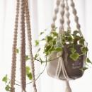インテリアも、暮らしやすさもの写真 観葉植物