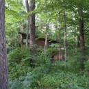 軽井沢の家~木々を一切切らずそのままの敷地を生かし、そこにそっと置いてあげたような住宅~の写真 軽井沢の家 外観1