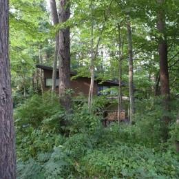 軽井沢の家~木々を一切切らずそのままの敷地を生かし、そこにそっと置いてあげたような住宅~ (軽井沢の家 外観1)