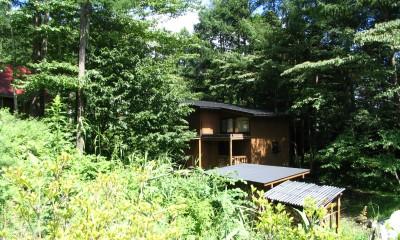軽井沢の家 外観2|軽井沢の家~木々を一切切らずそのままの敷地を生かし、そこにそっと置いてあげたような住宅~