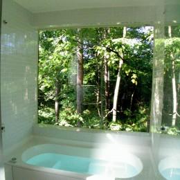 軽井沢の家~木々を一切切らずそのままの敷地を生かし、そこにそっと置いてあげたような住宅~ (軽井沢の家 浴室)