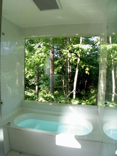 軽井沢の家 浴室 (軽井沢の家~木々を一切切らずそのままの敷地を生かし、そこにそっと置いてあげたような住宅~)