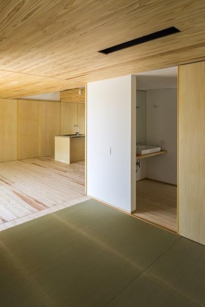 和室 (castor/単純な大屋根形状に普遍的な間取りを、立体的断面形状で組み込んでみる。)