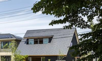 castor/単純な大屋根形状に普遍的な間取りを、立体的断面形状で組み込んでみる。 (外観)