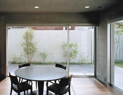 キッチンから中庭を見る (下町のコンクリートCUBE -コンクリート打ち放し-)