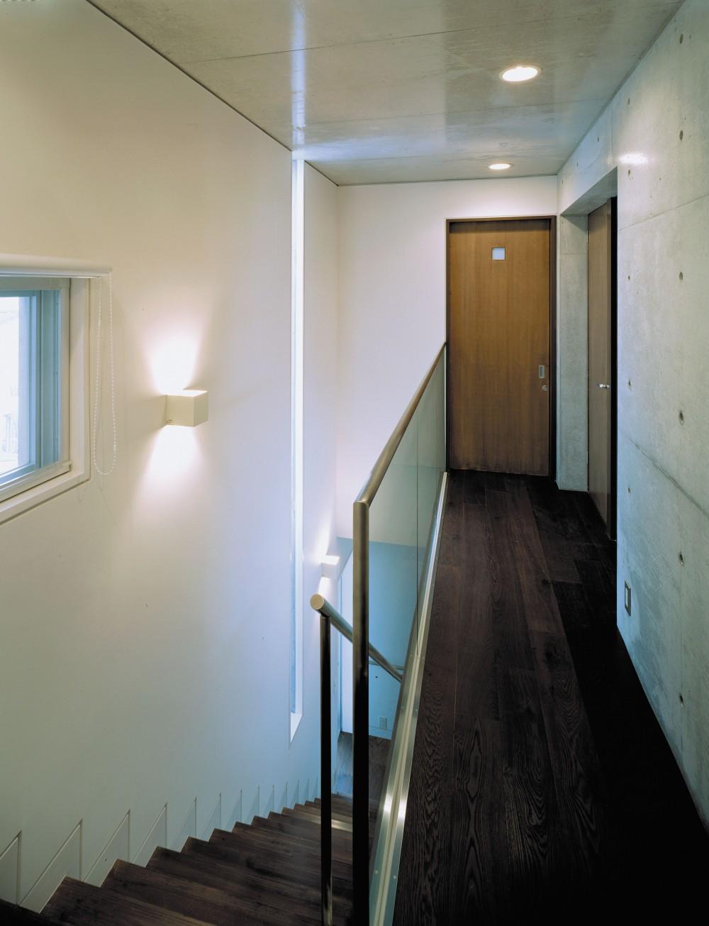 下町のコンクリートCUBE -コンクリート打ち放し- (階段)