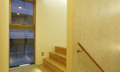 スキップフロア中間階廊下|犬と都心で暮らす家
