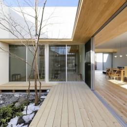 中庭 (sadaltager/方位性を失うことのできるコートハウスの作り方を考える。)