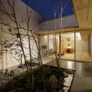 sadaltager/方位性を失うことのできるコートハウスの作り方を考える。の写真 中庭