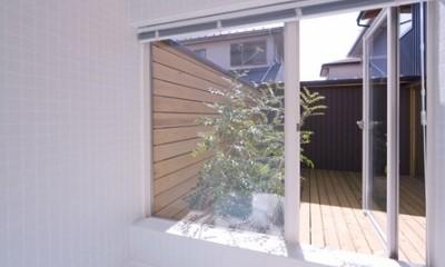 遠藤の家 浴室|遠藤の家~中庭から穏やかな光が差し込む家~