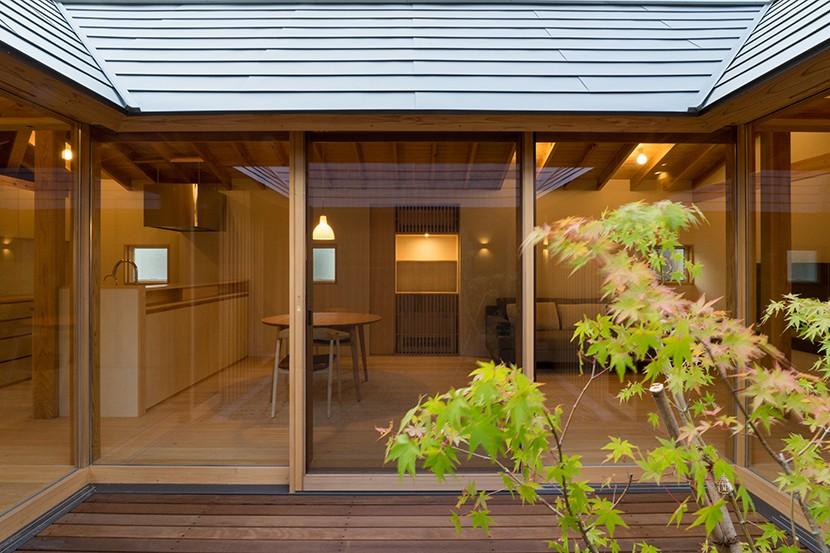 姉ヶ崎の家 大屋根と3つの庭|新築 (中庭、イロハモミジ越しの居間。)