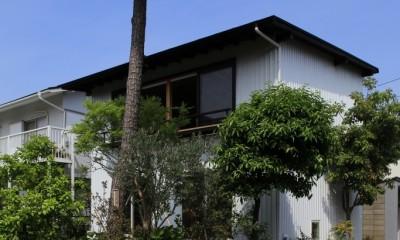 片瀬海岸の家~記憶の風景~