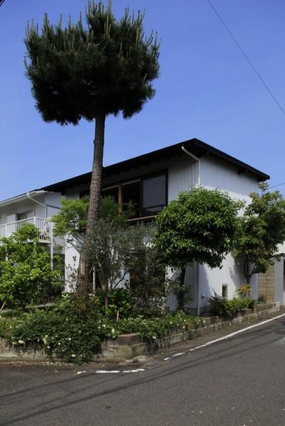 片瀬海岸の家~記憶の風景~ (片瀬海岸の家 外観1)