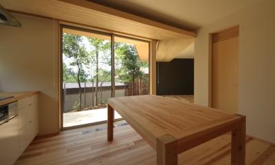 acubens/高台で、基本は平屋だけど、潜望鏡のように2階に上がると富士山が拝めるかたちを考える。 (ダイニングキッチン)