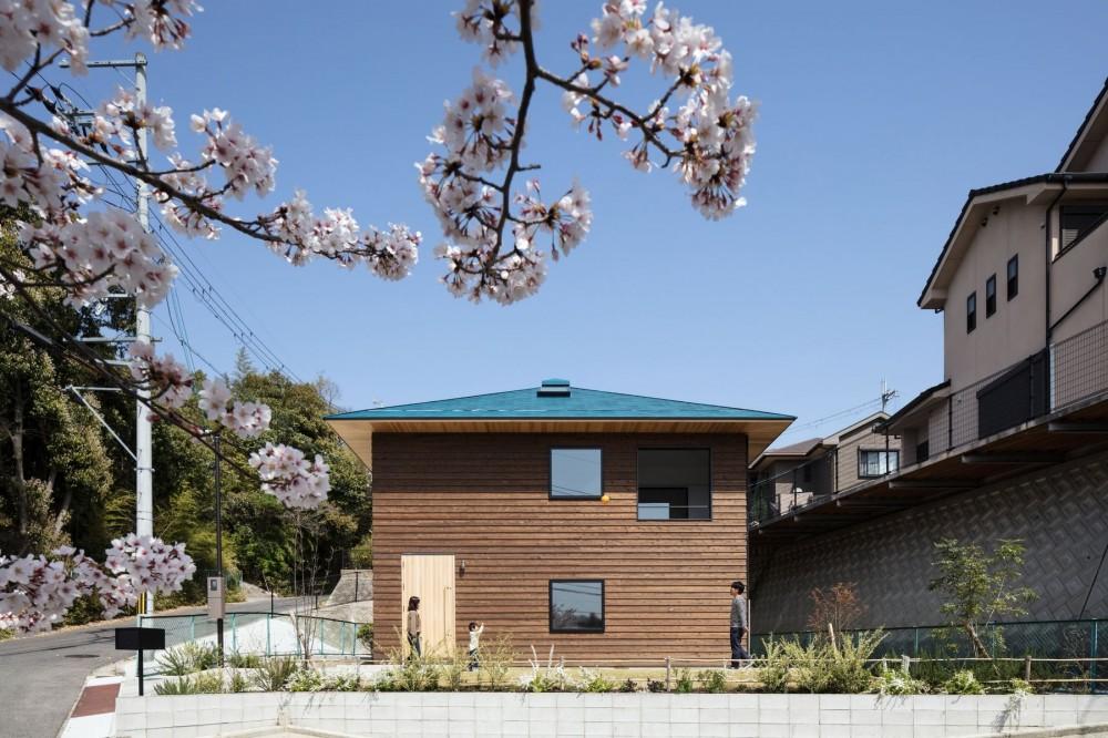 四つ角の家|家の中に4つの小さな家がある住宅【大阪府堺市】 (敷地の周りを斜路が取り囲みプライバシーを確保しにくい環境。唯一開けた南西に向けて大きな開口を取る。2階にはお花見の出来るテラス。)