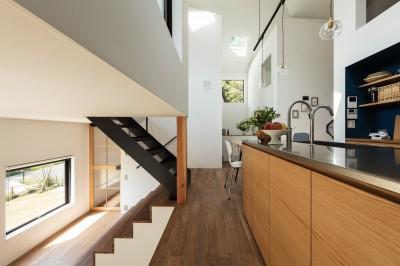 キッチンから四つ角を見返す。キッチン天板はステンレスバイブレーション仕上げ。扉はタモ突板。 (四つ角の家|家の中に4つの小さな家がある住宅【大阪府堺市】)