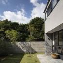 Primitive houseの写真 中庭