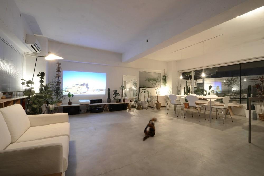 桑田豪建築設計事務所「SHINJUKU PENTHOUSE」