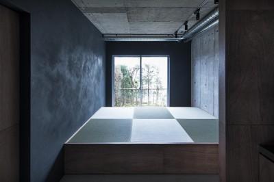 坪庭を望む畳スペース (暗い家)