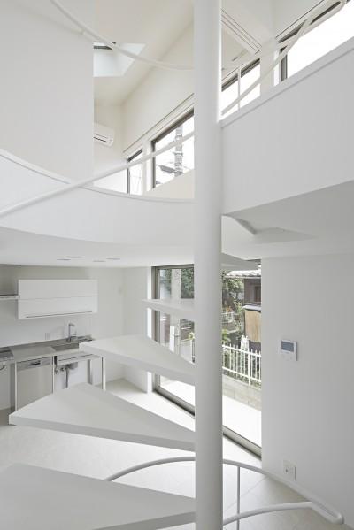 LDK (長窓の家)