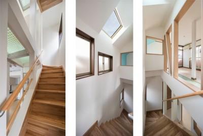 光あふれる階段 (光と風のリノベーション住宅)