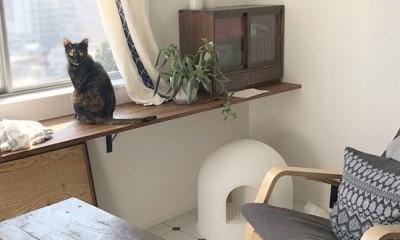 愛猫が駆け、風が通り抜ける、広々と心地良いインダストリアルな空間。 (日向ぼっこのできるテラス)