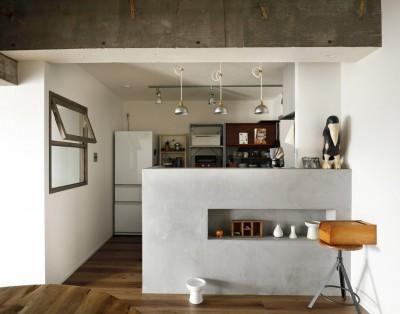 モールテックス仕上げのキッチン (愛猫が駆け、風が通り抜ける、広々と心地良いインダストリアルな空間。)