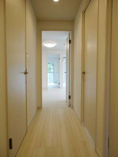 廊下 (やさしい白木調)