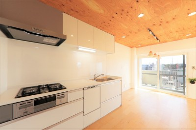 002「光と風が通りぬけるやすらぎの住空間」キッチン (中古マンション・フルリノベーション_002「光と風が通りぬけるやすらぎの住空間」)