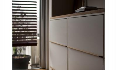 FMhouse // 築50年を過ぎたマンションのリノベーション (キャビネット)