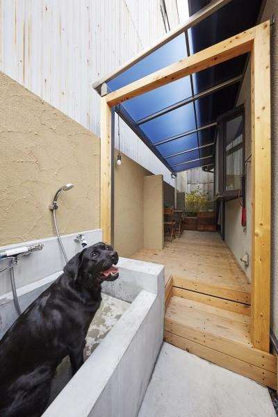 シャンプー好きワンちゃんのためのシャンプー台設置で愛犬にも快適なリフォーム (愛犬と快適に暮らせる工夫を凝らしたペットリフォーム)