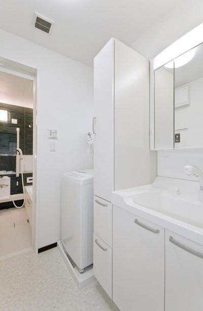 洗面室 (シックなイタリアンモダンの配色)