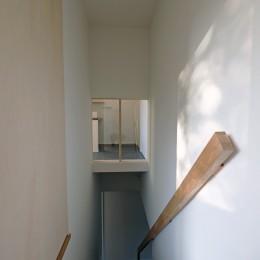 朝倉の家【リノベーション】 (視線の抜けを作った階段)
