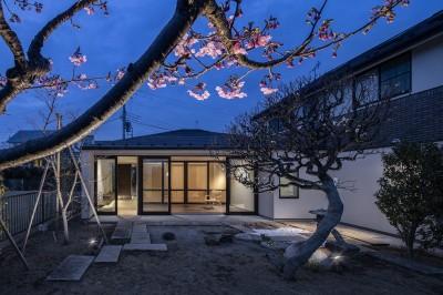 サクラの家 -寝室を中心として段階的に庭に開かれる住まい- (サクラ越の外観)