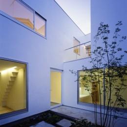 府中の住宅 (庭)