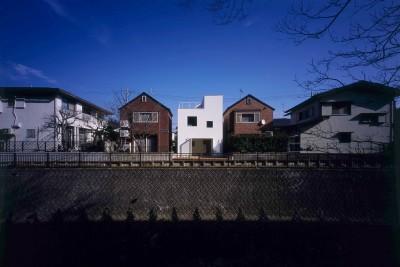 祖師谷の住宅 (外観)