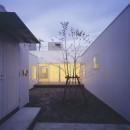 富津の2世帯住宅の写真 中庭