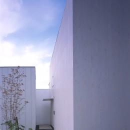 富津の2世帯住宅 (アプローチ(子世帯))