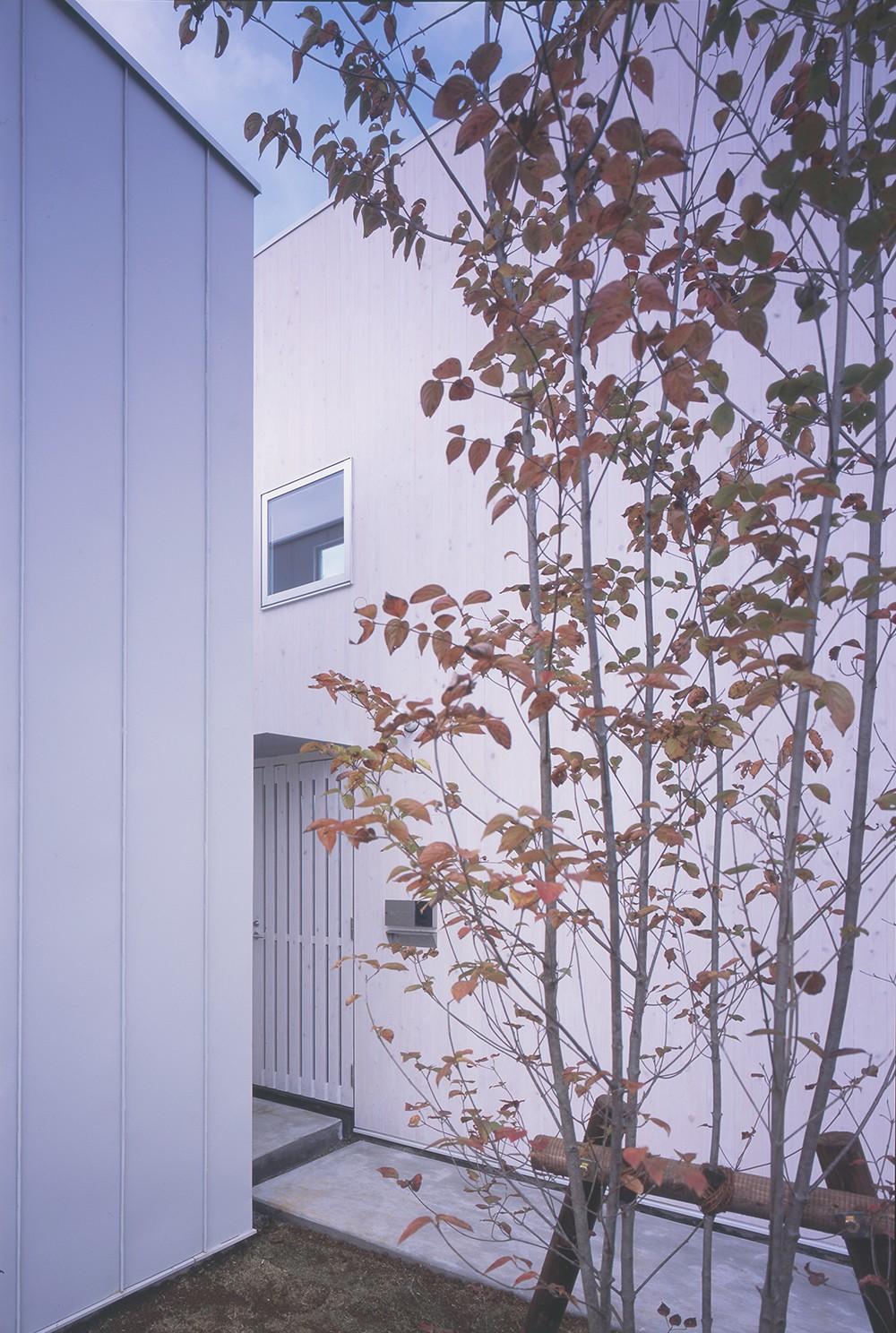 富津の2世帯住宅 (エントランス(子世帯))