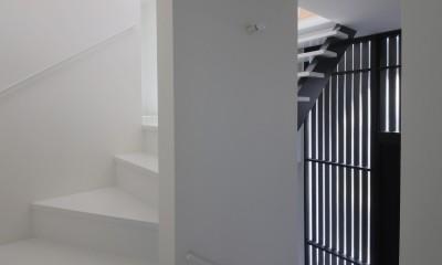 建もの探訪で放送 ピアノ室のある狭小住宅・スキップフロアを生かしたOUCHI-29 (玄関ホールと階段)