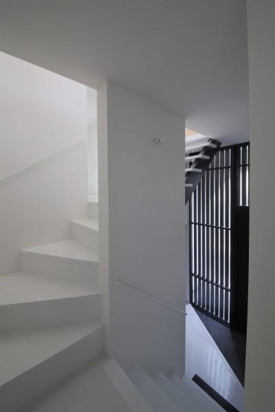 玄関ホールと階段 (ピアノ室のある狭小住宅・スキップフロアを生かしたOUCHI-29)