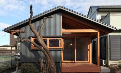 瀬谷の書斎 - 木造平屋の離れ (屋根のあるテラス)