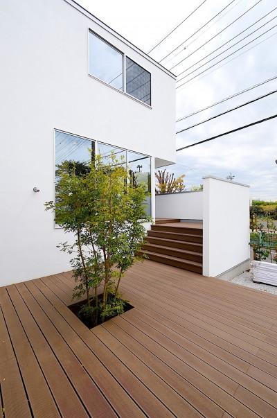 中庭の大階段 (A-House)