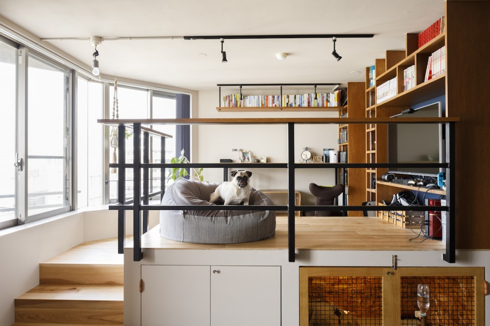chill vill-愛犬と一緒にのびのび暮らしたい。スキップフロアでつながる空間 (リビング)