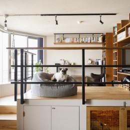 chill vill-愛犬と一緒にのびのび暮らしたい。スキップフロアでつながる空間