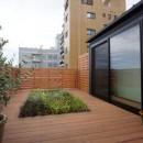 江古田の家 ―夫婦で趣味を楽しむの写真 屋上庭園